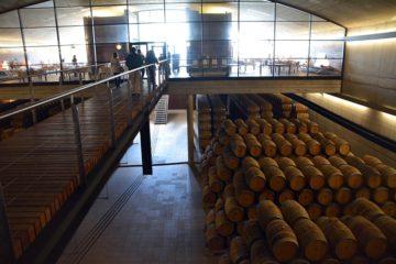 Rioja och San Sebastian
