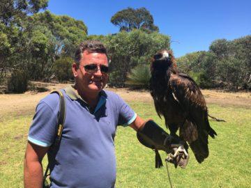 För 10 dollar fick man hålla denna örn på Kangaroo Island