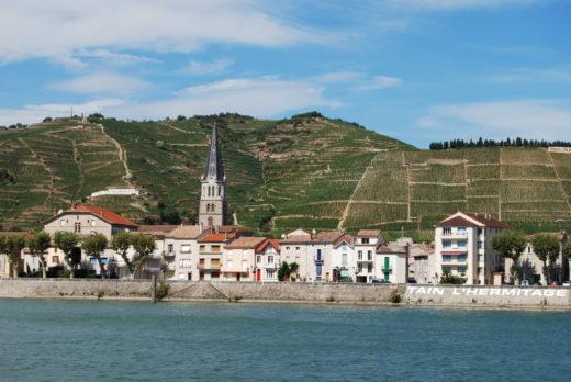Hermitage med sina 137 hektar producerar några av världens största vita och röda viner